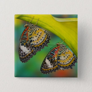 Sammamish, Washington. Tropical Butterflies 19 15 Cm Square Badge