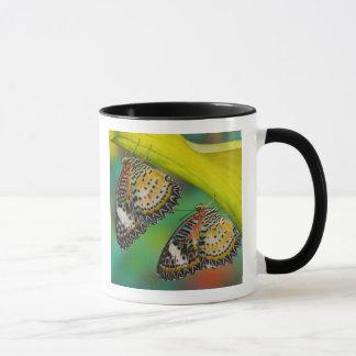 Sammamish, Washington. Tropical Butterflies 19 Mug