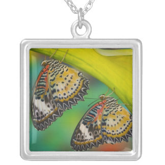 Sammamish, Washington. Tropical Butterflies 19 Silver Plated Necklace
