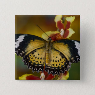 Sammamish, Washington. Tropical Butterflies 20 15 Cm Square Badge