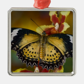 Sammamish, Washington. Tropical Butterflies 20 Christmas Ornament
