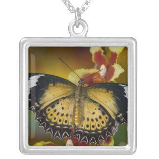 Sammamish, Washington. Tropical Butterflies 20 Square Pendant Necklace