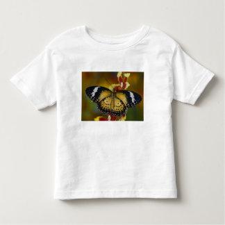 Sammamish, Washington. Tropical Butterflies 20 Toddler T-Shirt