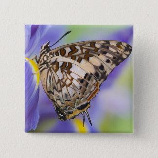 Sammamish, Washington. Tropical Butterflies 22 15 Cm Square Badge