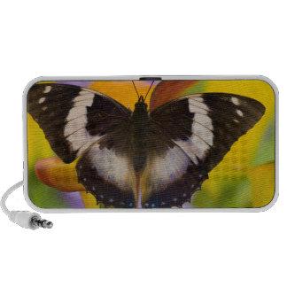 Sammamish, Washington. Tropical Butterflies 27 Mp3 Speakers
