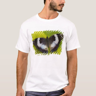 Sammamish, Washington. Tropical Butterflies 29 T-Shirt
