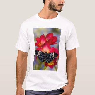 Sammamish Washington Tropical Butterflies 2 T-Shirt