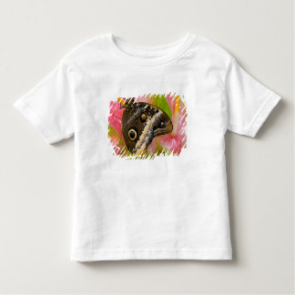Sammamish, Washington. Tropical Butterflies 30 Toddler T-Shirt