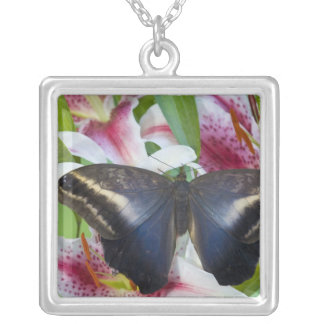 Sammamish, Washington. Tropical Butterflies 36 Square Pendant Necklace