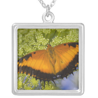 Sammamish, Washington. Tropical Butterflies 37 Custom Necklace