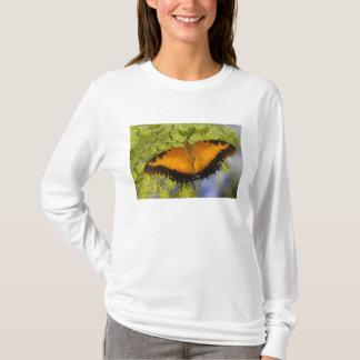 Sammamish, Washington. Tropical Butterflies 37 T-Shirt