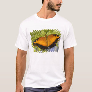Sammamish, Washington. Tropical Butterflies 37 T-Shirt