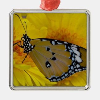 Sammamish, Washington. Tropical Butterflies 38 Christmas Ornament