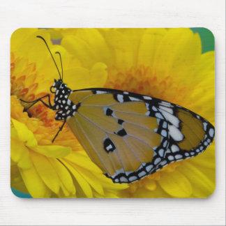 Sammamish, Washington. Tropical Butterflies 38 Mouse Mat