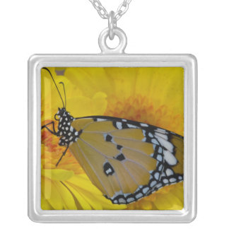 Sammamish, Washington. Tropical Butterflies 38 Silver Plated Necklace
