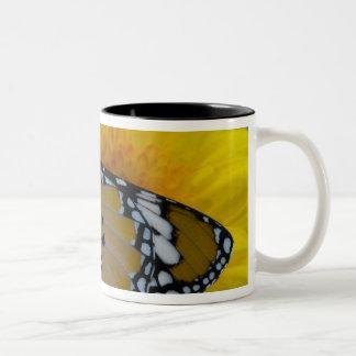 Sammamish, Washington. Tropical Butterflies 38 Two-Tone Coffee Mug