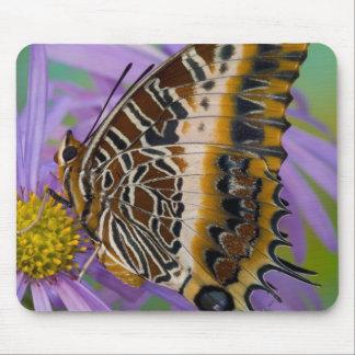 Sammamish Washington Tropical Butterflies 3 Mouse Mat