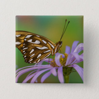 Sammamish, Washington. Tropical Butterflies 40 15 Cm Square Badge