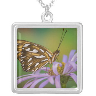 Sammamish, Washington. Tropical Butterflies 40 Square Pendant Necklace