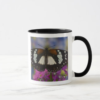 Sammamish, Washington. Tropical Butterflies 41 Mug