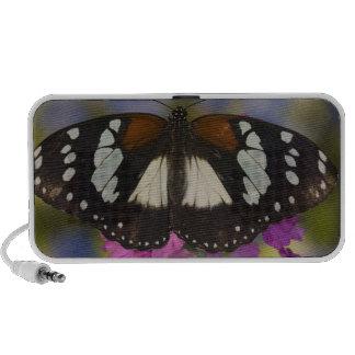 Sammamish, Washington. Tropical Butterflies 41 Portable Speakers