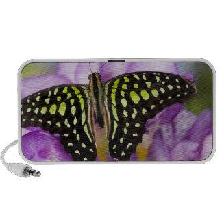 Sammamish, Washington. Tropical Butterflies 44 iPod Speakers