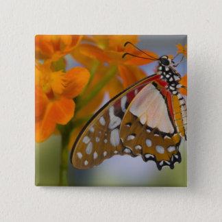 Sammamish, Washington. Tropical Butterflies 47 15 Cm Square Badge