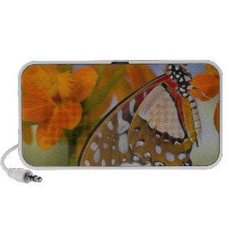 Sammamish, Washington. Tropical Butterflies 47 Notebook Speakers
