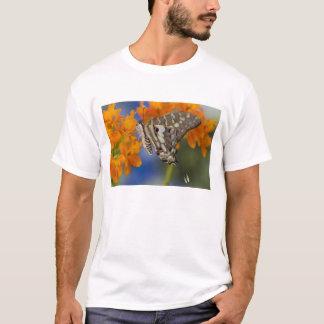 Sammamish, Washington. Tropical Butterflies 49 T-Shirt
