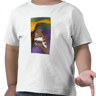 Sammamish, Washington. Tropical Butterflies 4 T-shirts