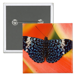 Sammamish, Washington. Tropical Butterflies 53 15 Cm Square Badge