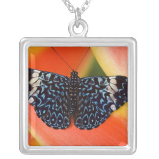 Sammamish, Washington. Tropical Butterflies 53 Silver Plated Necklace