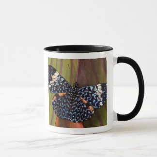 Sammamish, Washington. Tropical Butterflies 54 Mug