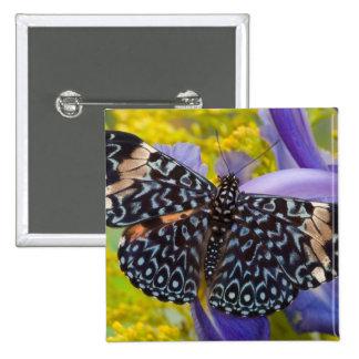 Sammamish, Washington. Tropical Butterflies 55 15 Cm Square Badge