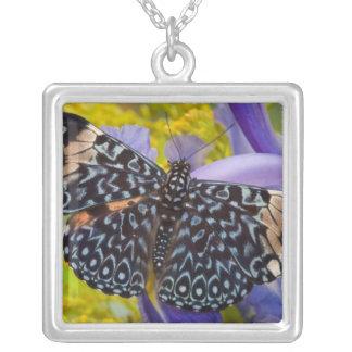 Sammamish, Washington. Tropical Butterflies 55 Square Pendant Necklace