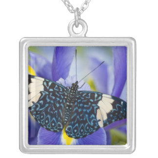 Sammamish, Washington. Tropical Butterflies 56 Silver Plated Necklace