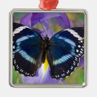 Sammamish, Washington. Tropical Butterflies 57 Christmas Ornament
