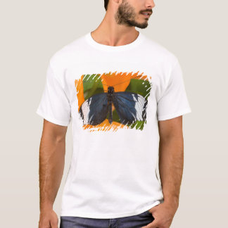 Sammamish, Washington. Tropical Butterflies 59 T-Shirt