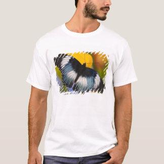 Sammamish, Washington. Tropical Butterflies 61 T-Shirt