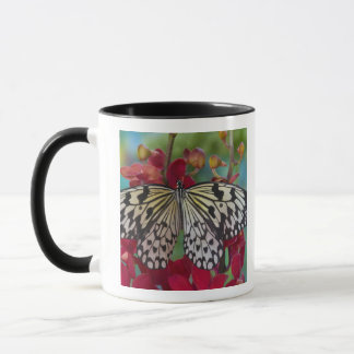 Sammamish, Washington. Tropical Butterflies 63 Mug