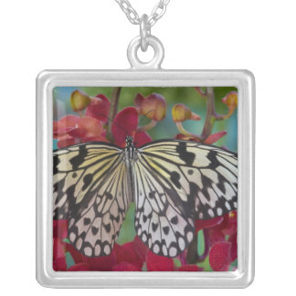 Sammamish, Washington. Tropical Butterflies 63 Silver Plated Necklace