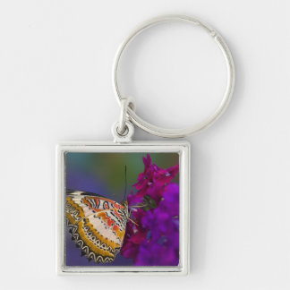 Sammamish, Washington. Tropical Butterflies 64 Silver-Colored Square Key Ring