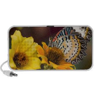 Sammamish, Washington. Tropical Butterflies 66 Notebook Speakers