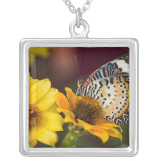 Sammamish, Washington. Tropical Butterflies 66 Square Pendant Necklace