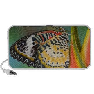 Sammamish, Washington. Tropical Butterflies 67 iPhone Speaker