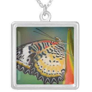 Sammamish, Washington. Tropical Butterflies 67 Square Pendant Necklace