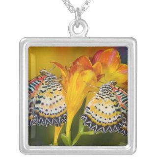 Sammamish, Washington. Tropical Butterflies 68 Square Pendant Necklace