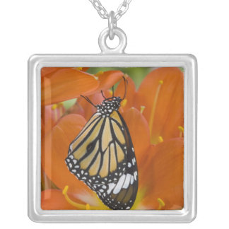 Sammamish, Washington. Tropical Butterflies 69 Personalized Necklace
