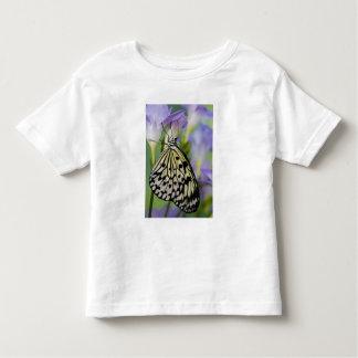Sammamish, Washington. Tropical Butterflies 6 Toddler T-Shirt