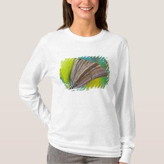 Sammamish, Washington. Tropical Butterflies 8 T-Shirt